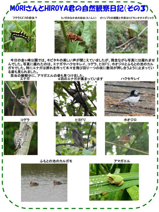 150509_nature_04.jpg