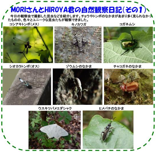 150606_img_nature_03.jpg