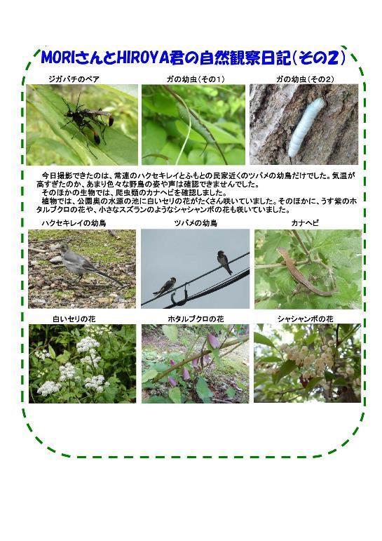 170708 里山整備活動報告-003-resize.jpg