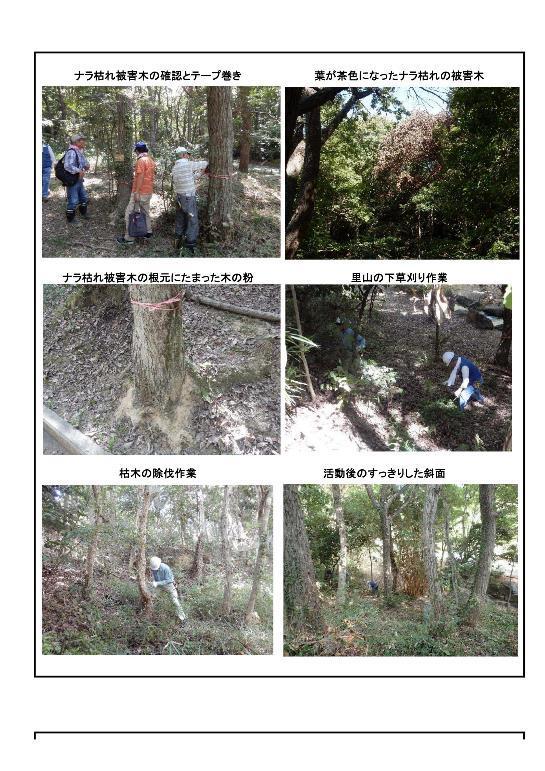 170902 里山整備活動報告-002-resize.jpg