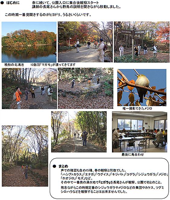 20101225_nature_01.jpg