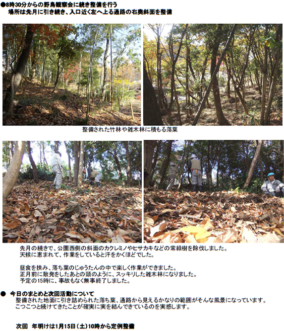 20101228_nature_01.jpg