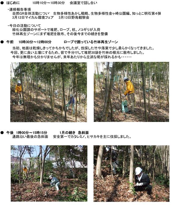 20110310-nature-img-01.jpg