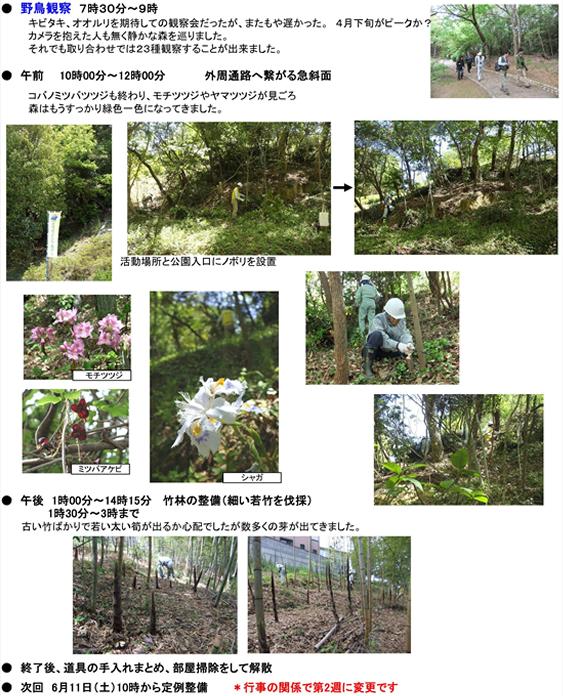20110531_img_nature_01.jpg