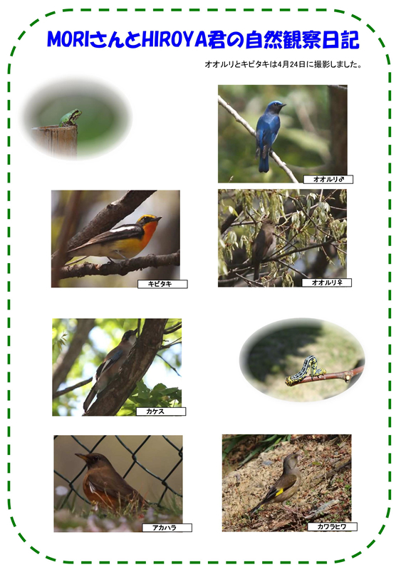 20110531_img_nature_02.jpg