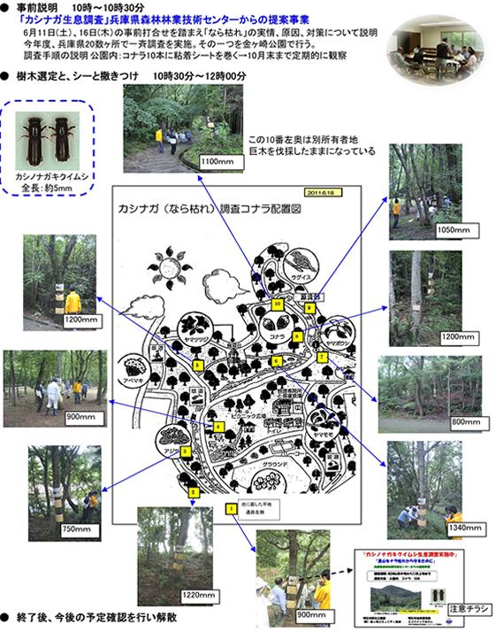 20110627-nature-img-001.jpg