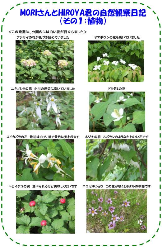 20120622_img_02_s2.jpg