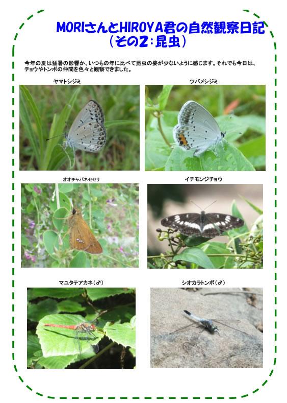 20120910_nature_img_03.jpg
