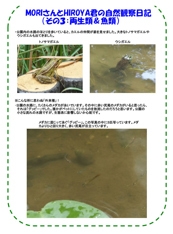 20120910_nature_img_04.jpg