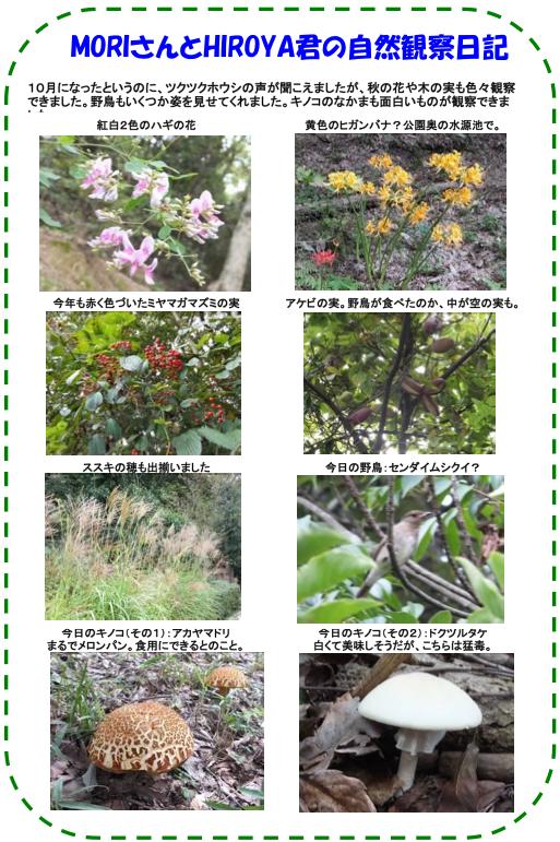 20121112_nature_003_s2_s3.jpg