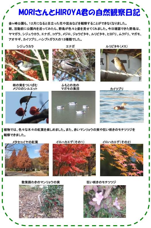 20121201_nature_img_03.jpg