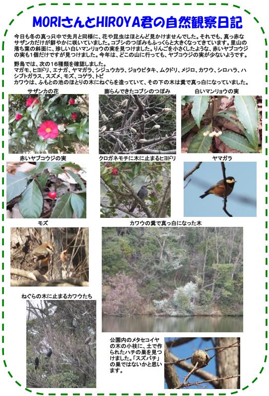 20130124_nature_img_02.jpg