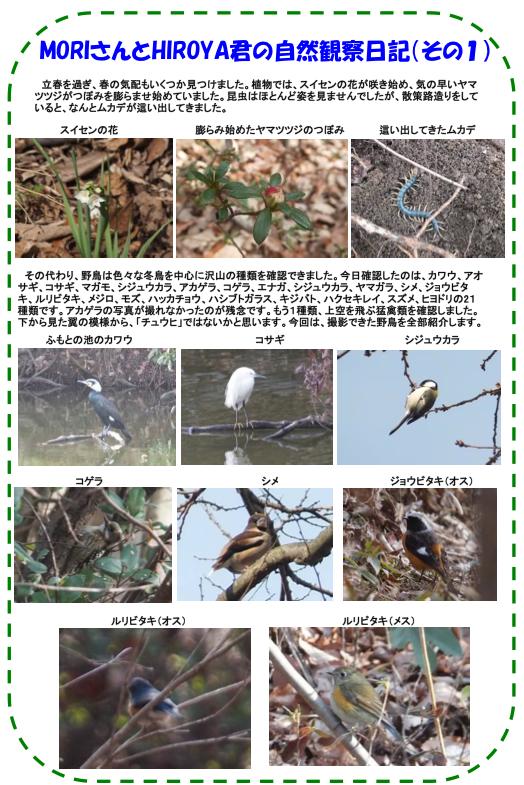 20130209_nature_img_02.jpg