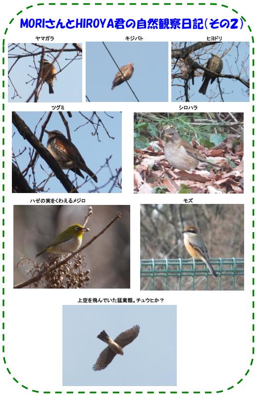 20130224_img_nature_02.jpg