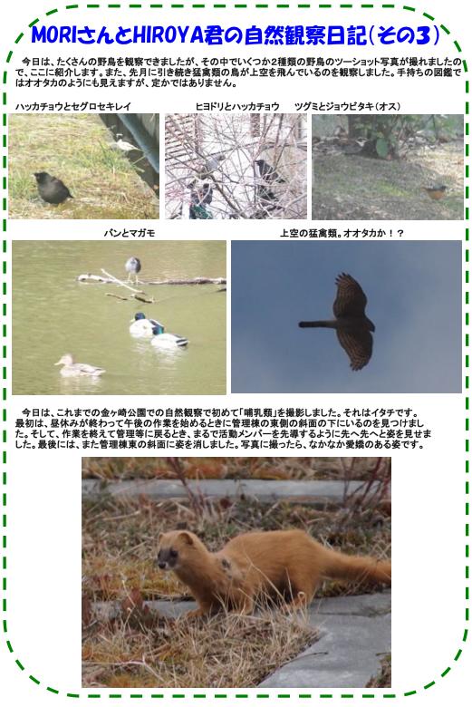 20130311_nature_img_04_s4.jpg