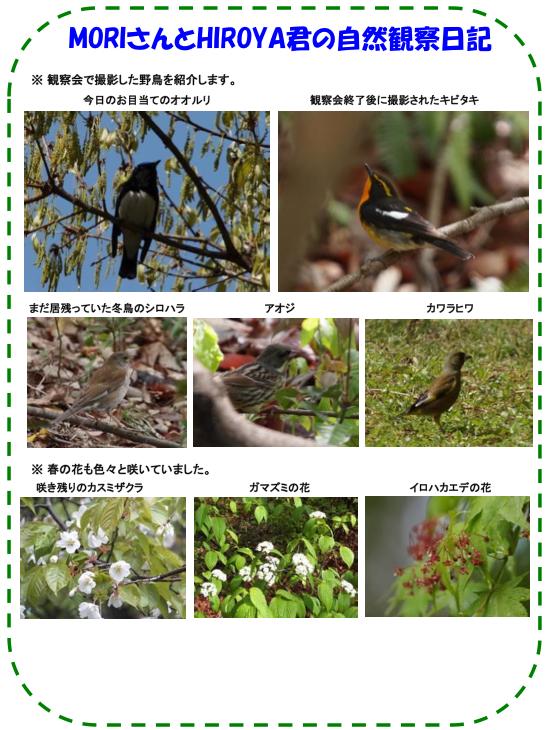 20130421_nature_img_02.jpg