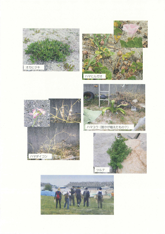 20130615_nature_Page_3.jpg