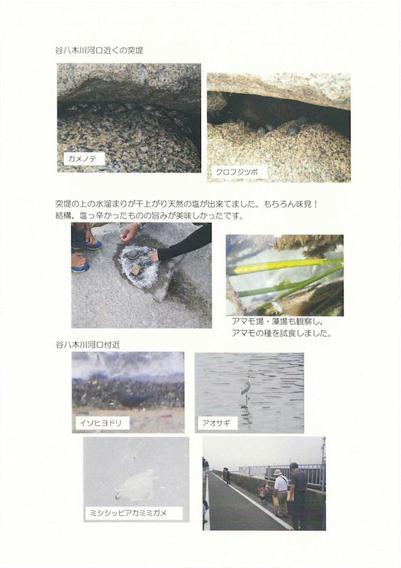 20130615_nature_Page_5.jpg