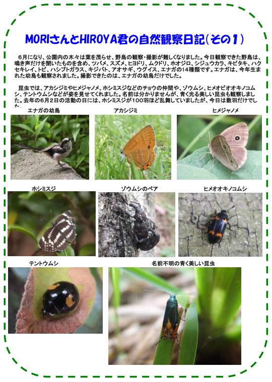 20130629_nature_img_002.jpg
