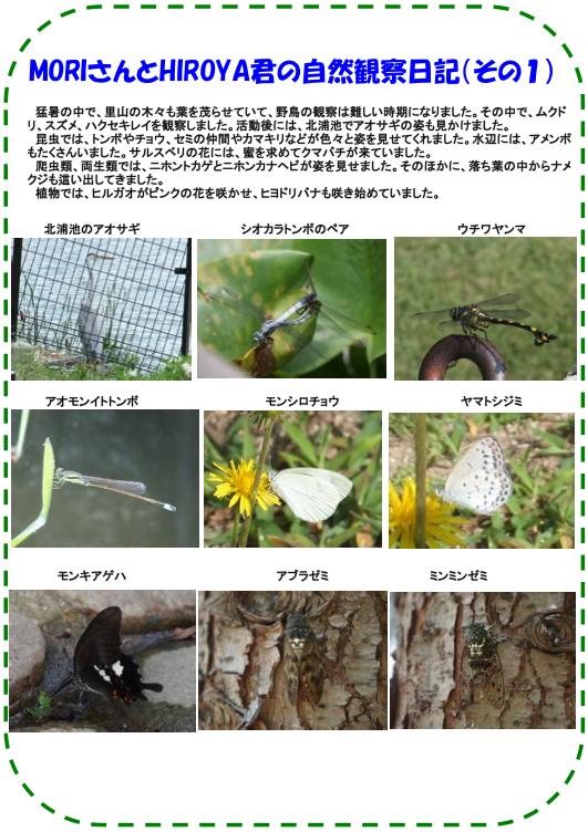 20130812_nature_img_02.jpg