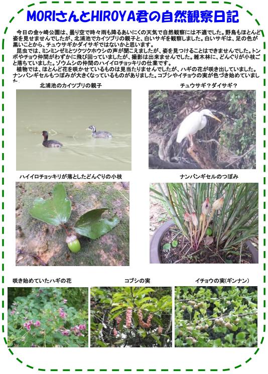 20131001_nature_img_02.jpg