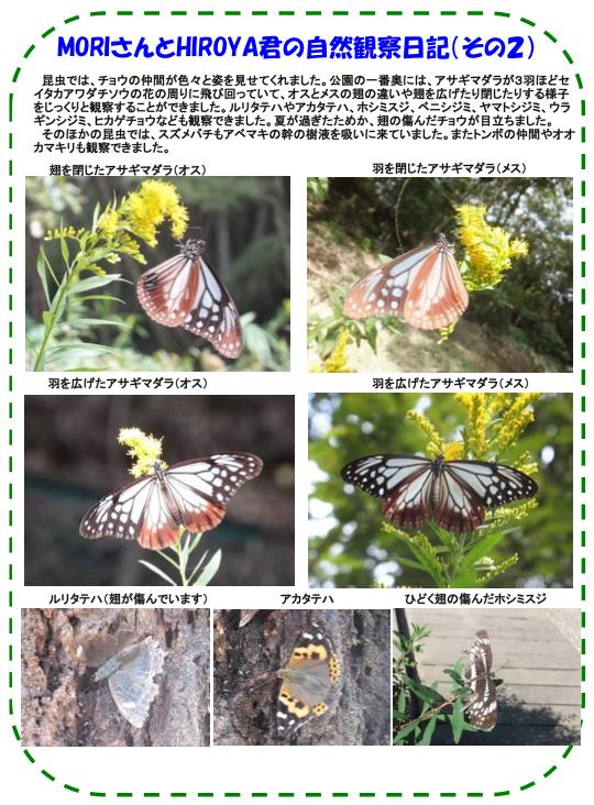 20131010_nature_01.jpg