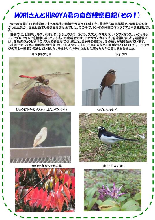20131102_nature_03.png