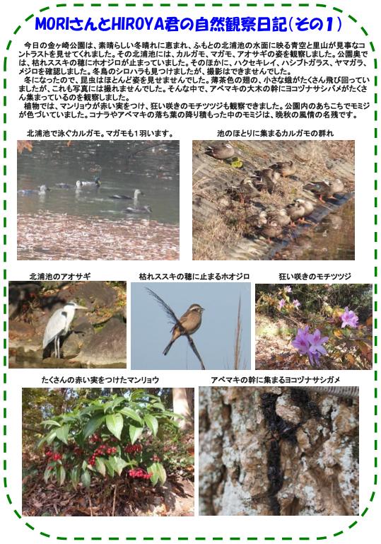 20131207_nature_03.png