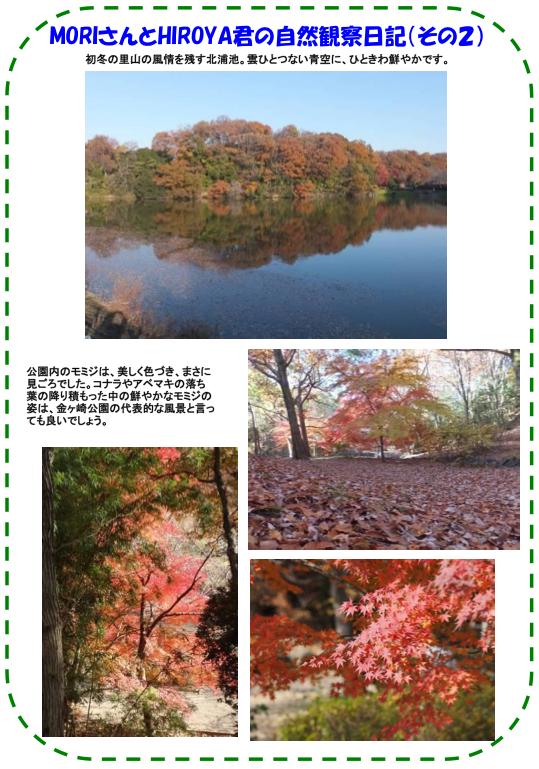 20131207_nature_04.png