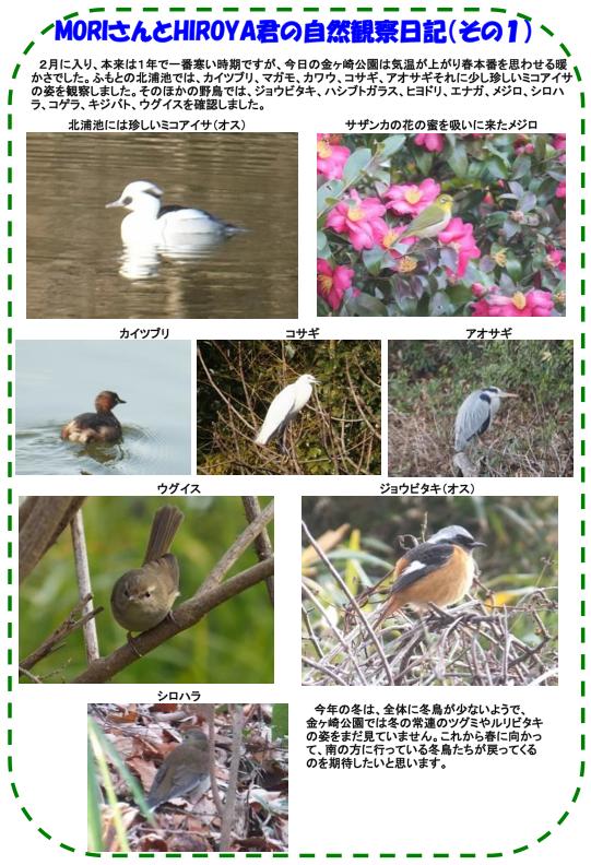 20140201_nature_img_03.png