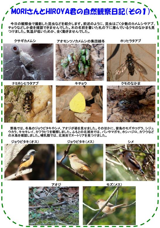 20160109_nature_02.png