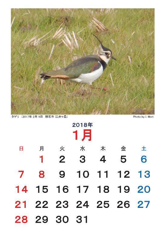 20171212_calendar-resize.jpg