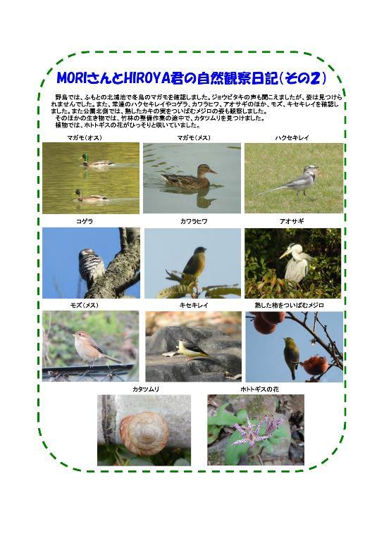 PDF ファイル-003-resize.jpg