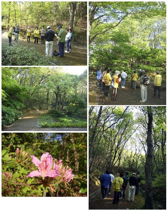 野鳥観察会 in 金ヶ崎公園