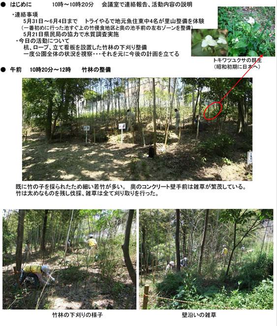 nature_100623_2_1.jpg