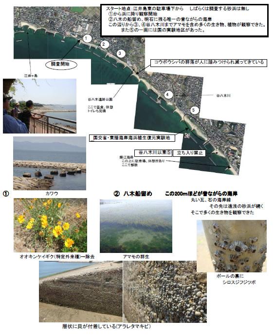 nature_100709_1.jpg