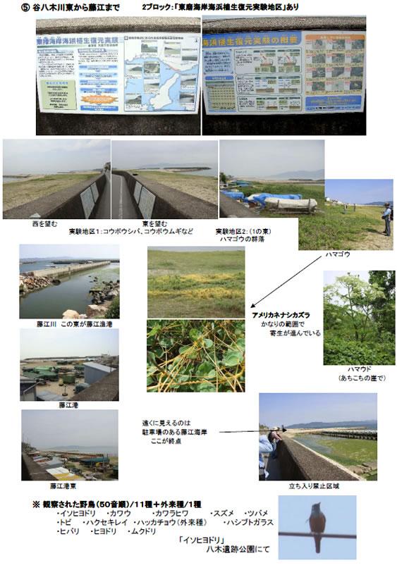 nature_100709_3.jpg