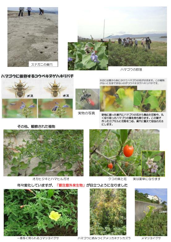 nature_140824_02.jpg