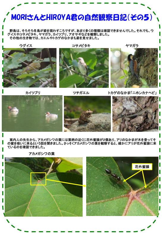 nature_140906_06.jpg