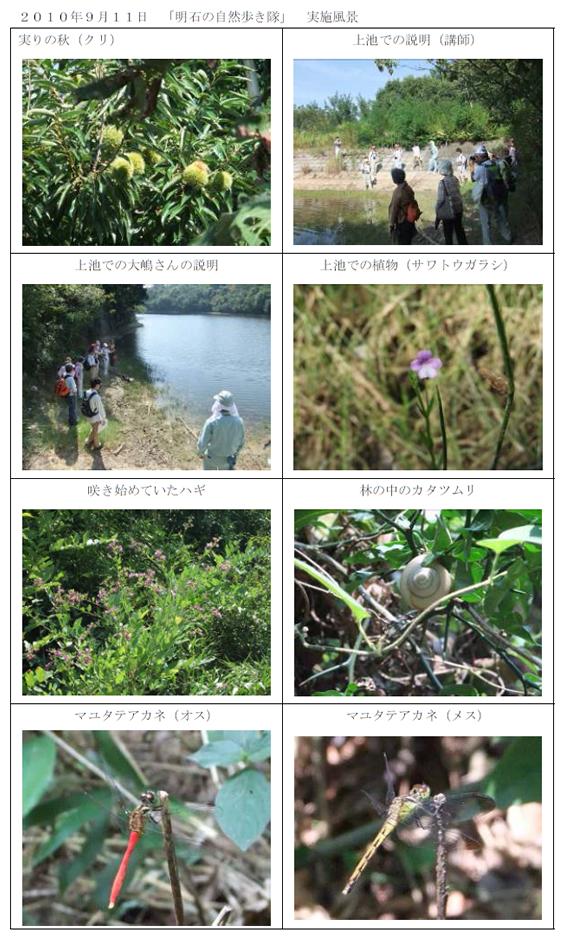 nature_20101006_img01.jpg