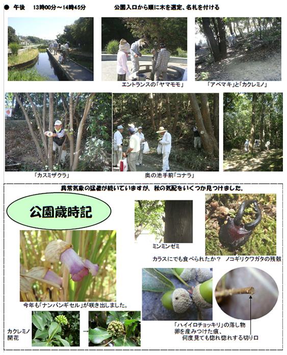 nature_20101007_img02.jpg