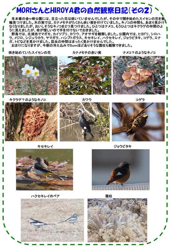 nature_img_04.png